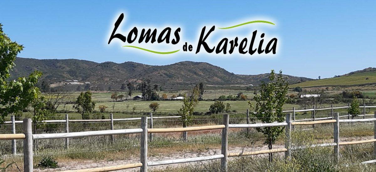 Lomas-de-Karelia-1