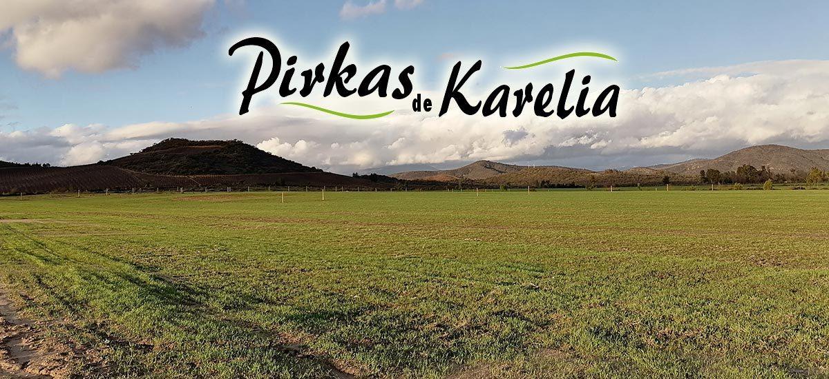Pirkas-de-Karelia-1